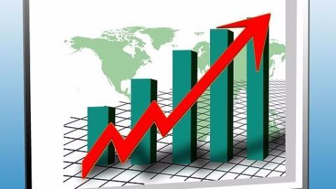 The growth of Rajesh Exports