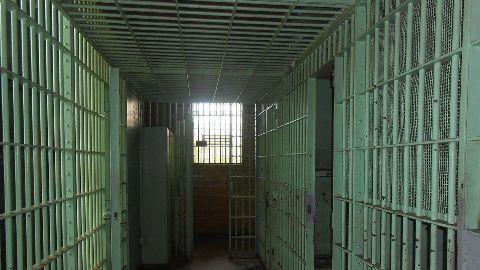 Dutt granted bail again