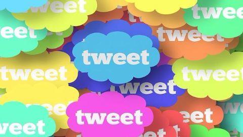 Twitterati hopes Gandhi will bring 'sabbatical revolution'