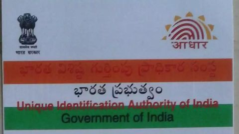 What is the UIDAI?