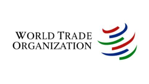 India knocks WTO's door to resolve H1B issue