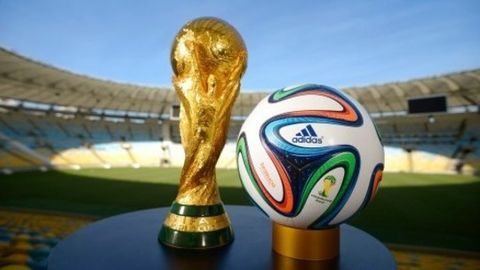 FIFA widens access to World Cup report