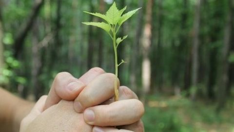 Celebrate World Environment Day today!