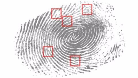 Zwipe and MasterCard launch fingerprint scan cards