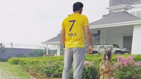 Chennai's 'Super King' Mahendra Singh Dhoni
