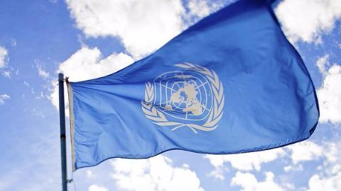 India's bid for UN Security Council seat rekindled