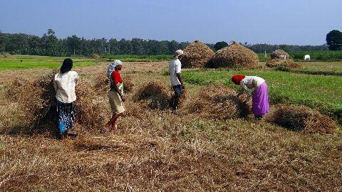 SKS under scanner over Andhra suicides