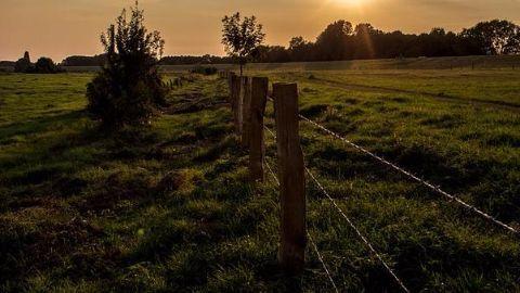Hungary builds border fence along Serbian border