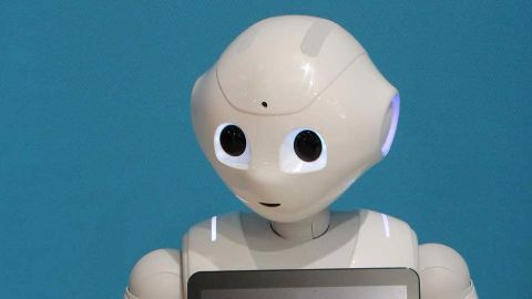 Humanoid robot makes European debut in France