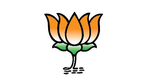 BJP lashes out at the RTI activist