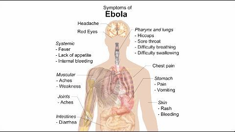 Sierra Leone's terror: Ebola virus