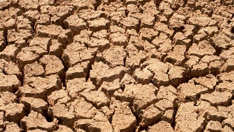 Drought hit farmers return awards in Maha