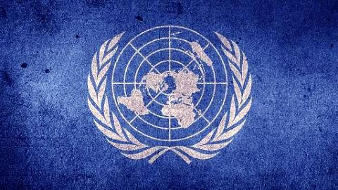 UN court has asked India to release Italian marines: Italy