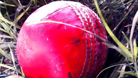 The Pink Ball to make a historic entry