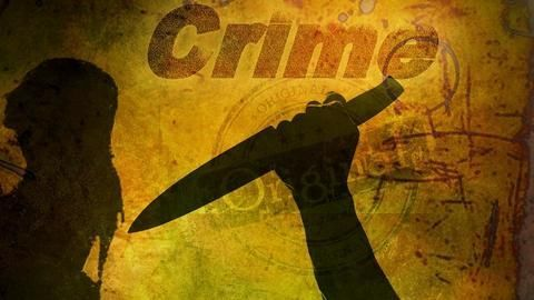 Slight dip in crimes this year, motor vehicles theft increase