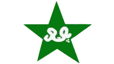 Pakistan team's performance in 2016
